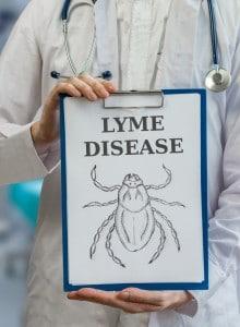 ziekte-van-lyme - ziekte van lyme